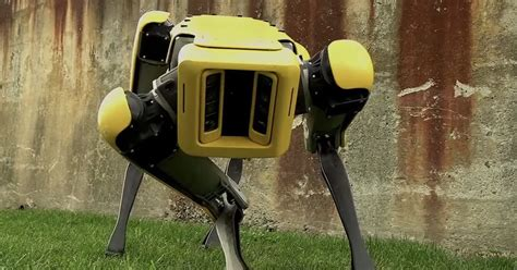 HEADLESS robot dog revealed by Boston Dynamics - and it