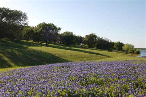 Lake Whitney State Park (TX): Address, Phone Number, Top