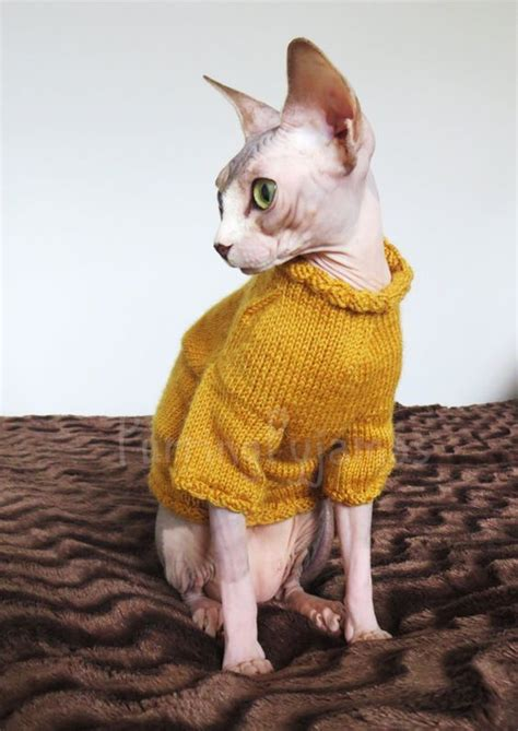 Cat clothes, sphynx clothes, clothes for sphynx, sphynx